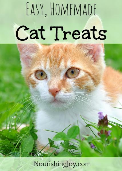 cat treats vertical