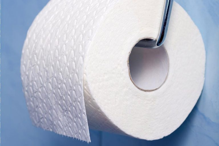 How to Make Your Own Toilet Paper (and why you might never go back)