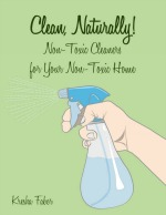 Clean, Naturally! A Concise Guide to Non-Toxic, Homemade Cleaners | NourishingJoy.com