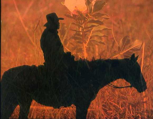 In Memoriam: John Nickel, the Gentleman Cowboy Who Bucked the Status Quo