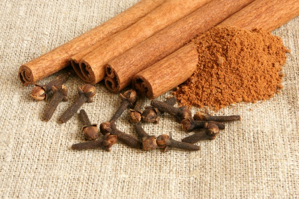 Cinnamon & Clove Remineralizing Tooth Powder | NourishingJoy.com