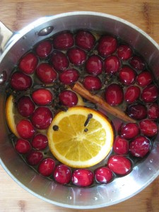 Cranberry Orange Christmas Potpourri - the scent of heaven :)
