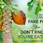 The Fake Food You Don't Know You're Eating (Part 1) | @NourishingJoy via KeeperoftheHome.org