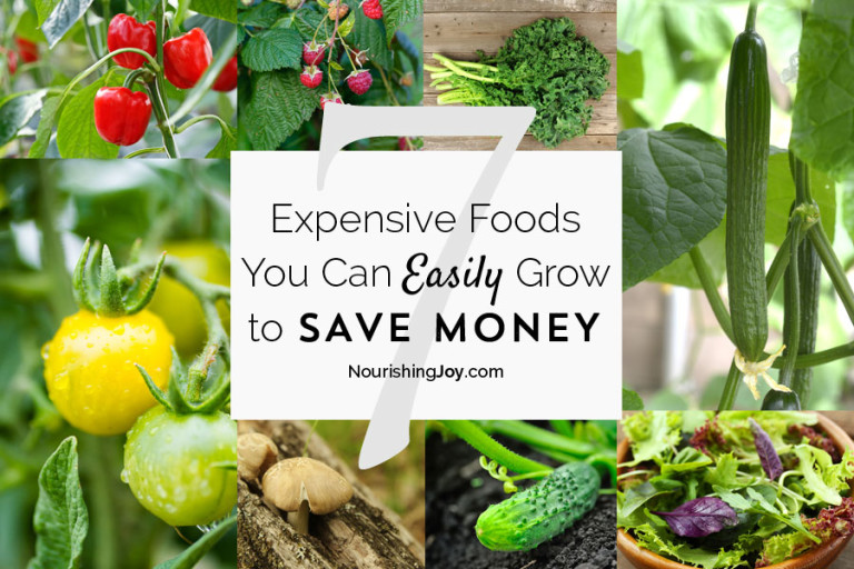 7 Expensive Foods You Can Grow to Save Money