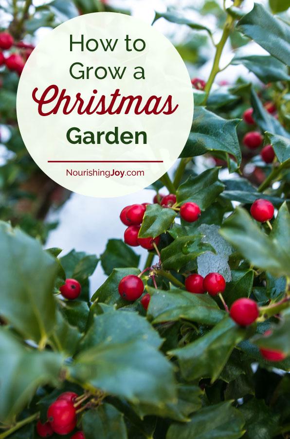 How to Grow a Garden Youll Actually Use Nourishing Joy
