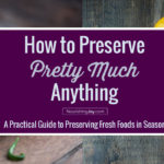 Summertime is a time of bounty - so here's a thoroughly packed guide to how to preserve pretty much ANYTHING - from apples, bamboo shoots, and cherry blossoms to salmon, yams, and zucchini!