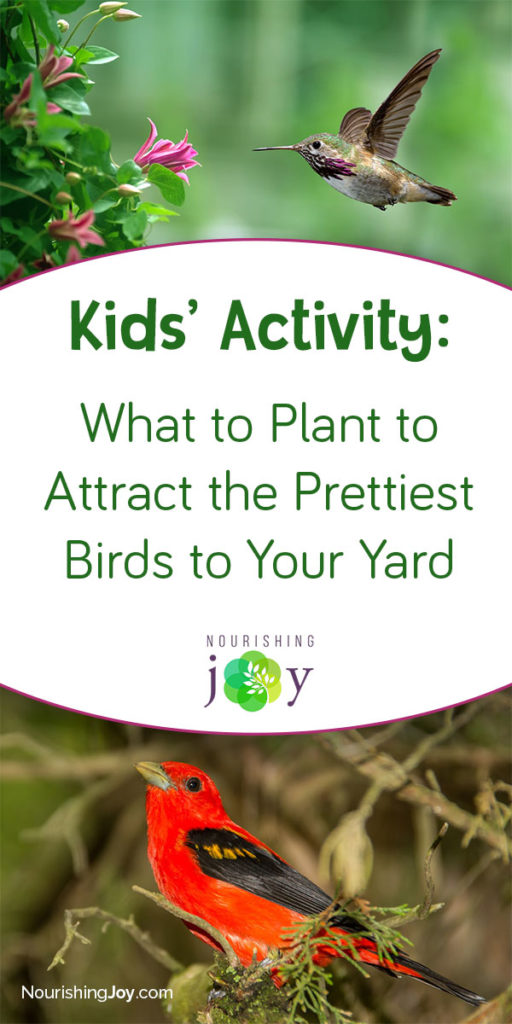 This is a GREAT activity to do with your kids, as it will foster the joy of discovery in both kids AND adults for years to come. Seriously a great idea!
